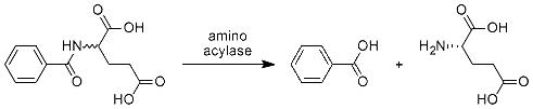 Aminoaacylases
