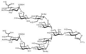 171810  SG-Oxazoline