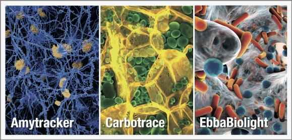 Ebba-Biotech